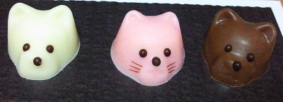 猫チョコ2.jpg
